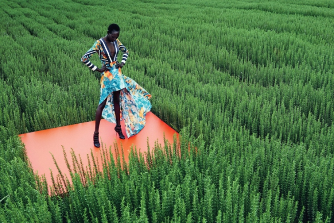 mixed message Ajak Deng by julia noni for neiman marcus 12